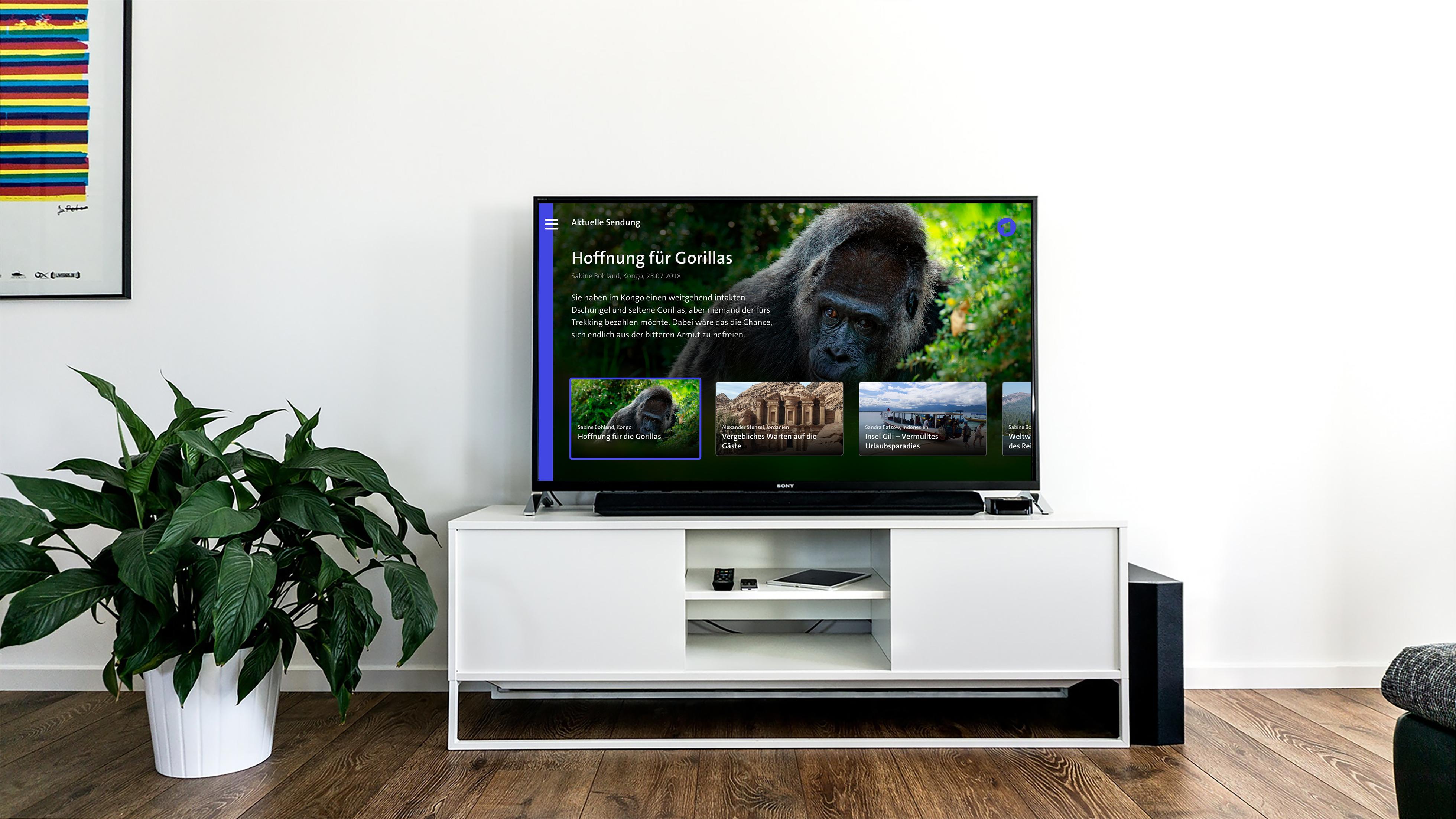Wohnzimmer mit Smart TV